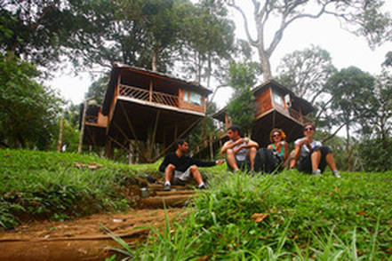 Munnar Tree House Nature Zone Resort
